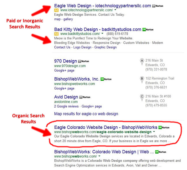 google ads - Questions About SEO?